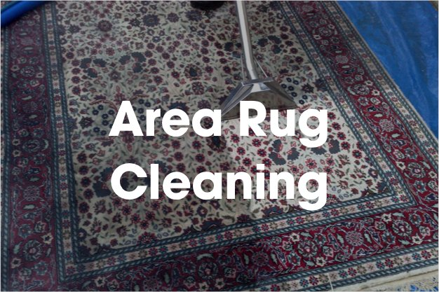 Importance Of Employing An Area Rug Cleaning Company