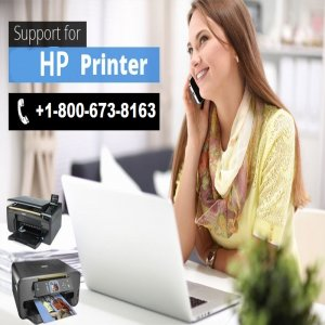 How To Connect HP Printer To Computer| Technical Support For Hp Printers