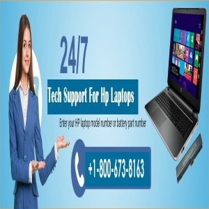 Hp Laptop Support Customer Service To Get Errors Fixed