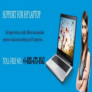 Implement The Actual Steps To Solve The HP Laptop Black Screen Problem