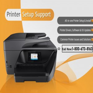 Learn Easy Ways To Save Printing Costs With Hp Printers Support Phone Number